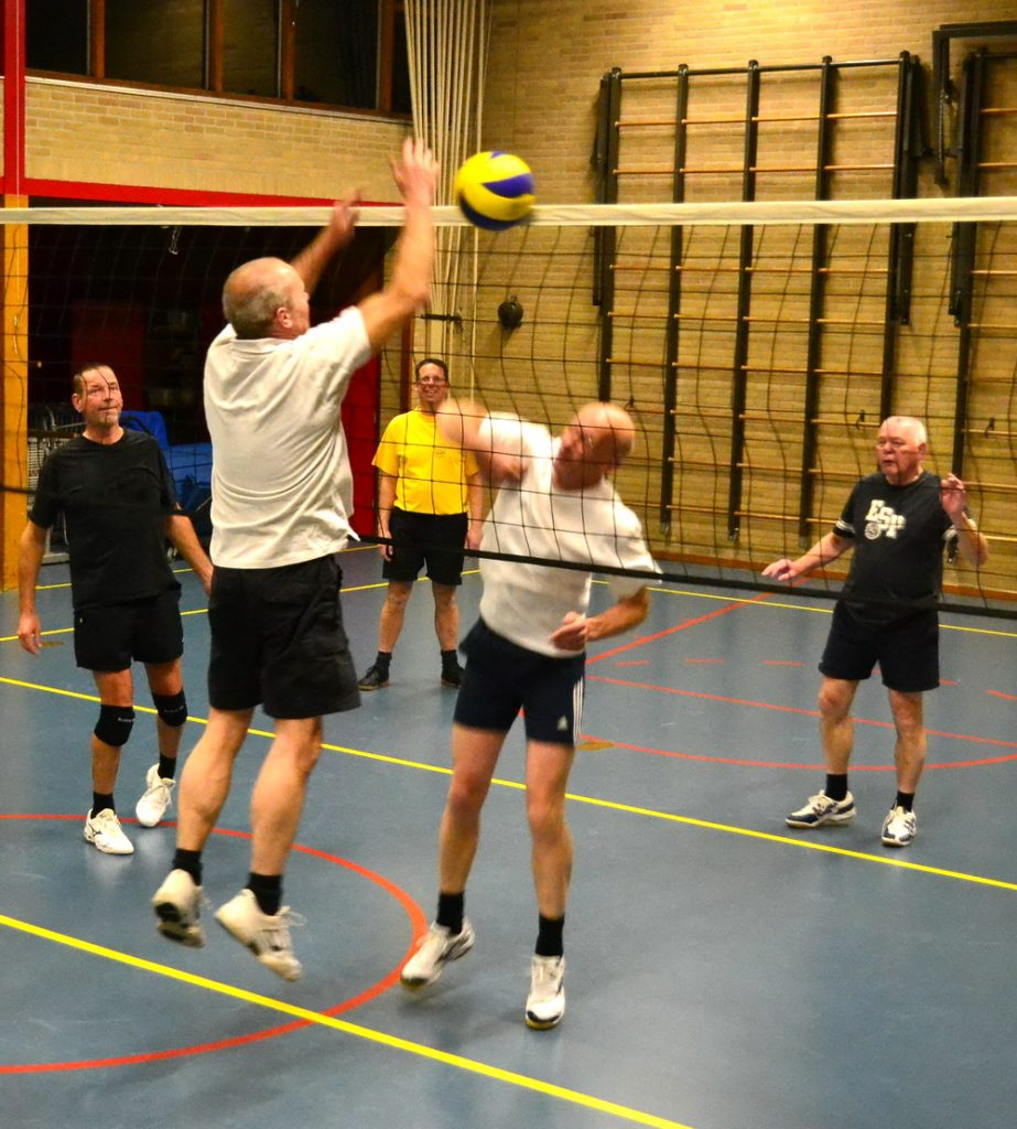 Top Fit Volley